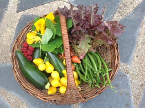 Fresh fruit and vegetables grown in our garden