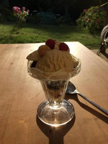 Ice cream sundae with fruit from the garden